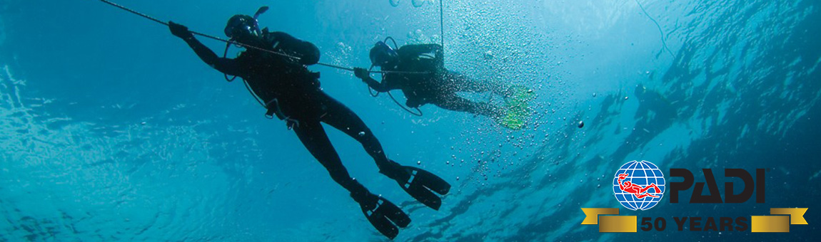 PADI TRAINING COURSES SLIDER