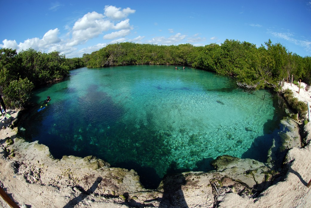 SEA AND CENOTE SNORKELING ADVENTURE